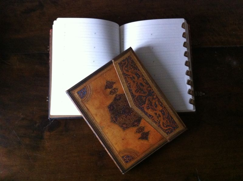 paperblanks-albinabosch-06