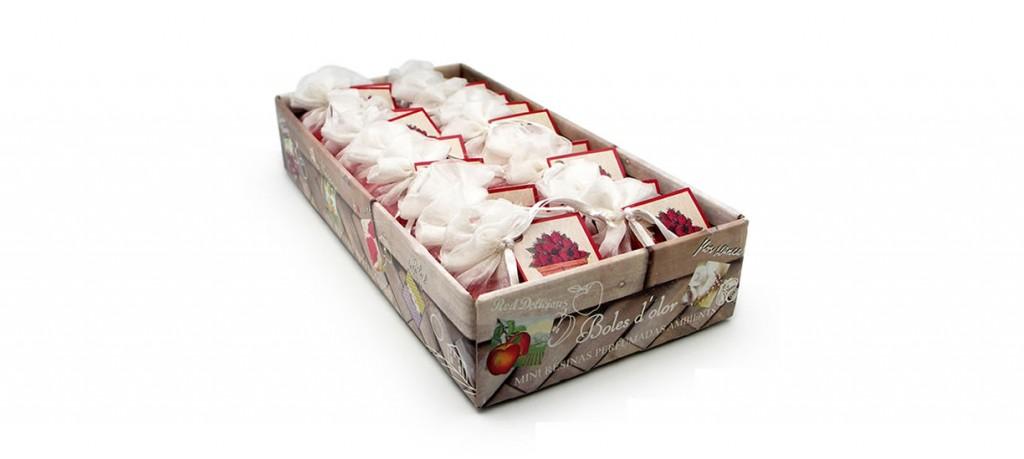 albinabosch-aromas-bolesdolor-portadas-_s05