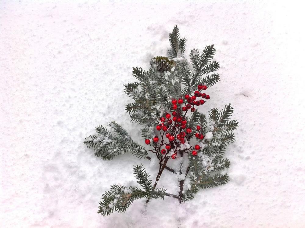 Adornos arbol de navidad albina bosch valdaran vielha 16 - Arbol de navidad adornos ...