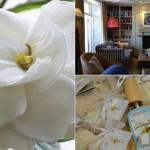 Gardenia-aroma-de-Boles-dOlor-Albina-Bosch-Vall-dAran-portada