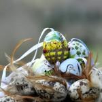 art-painting-easter-huevos-de-Pascua-pintados-a-mano-Albina-Bosch-06