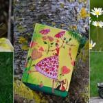 primavera-valdaran-albinabosch-portada-