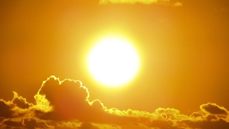 amarillo-verano-val-daran-albina-bosch-01