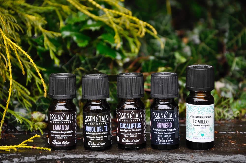 aceites-esenciales-para-purificar-el-ambiente-DSC4738